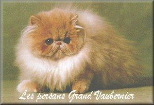 Chatterie du Grand Vaubernier